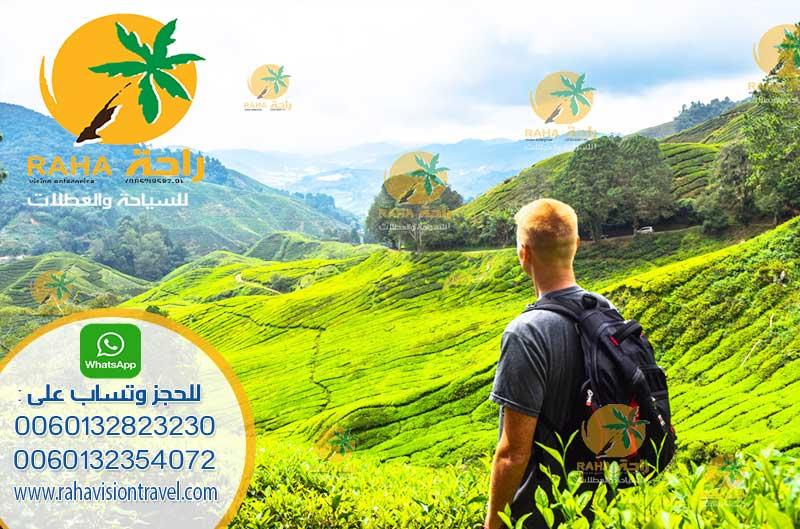 ارخص العروض السياحية ماليزيا 2018 تبدا من 450 فرصة لن تتكرر من راحة للعطلات Cameron-highland13
